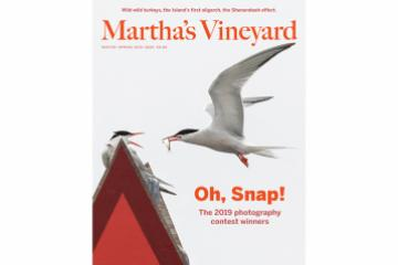 marthas vineyard magazine